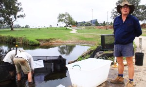 VIDEO: SEQ Fish passage restoration project