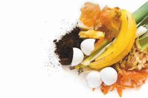 FIAL funds feasibility study into halving food waste