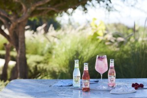 Fever-Tree expands natural soda range