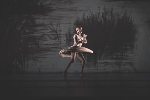 Perth Festival: Swan Lake, The Nature of Why, Giselle