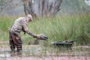 Duck Season Hangs In The Balance Due To Political Games
