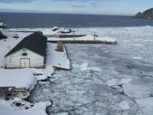 Newfoundland to Norway: an antidote to a long hot summer