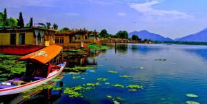Kashmir: re-opened for business