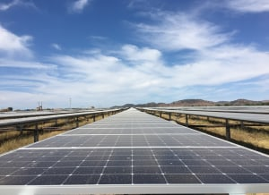 Kellogg's agrees to solar power in NSW