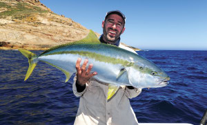 How to catch kingfish on livebait