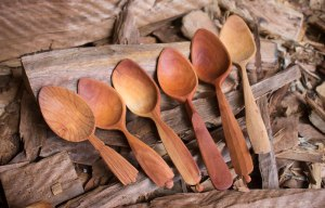 The Green Wood Spoon