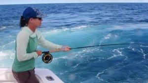 VIDEO: Costa Rica blue marlin on fly