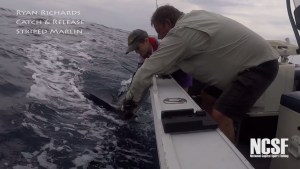 VIDEO: Eleven year old's first marlin