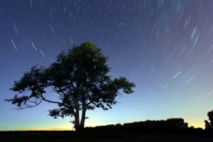 Astroblog: Eta Aquarid meteor shower