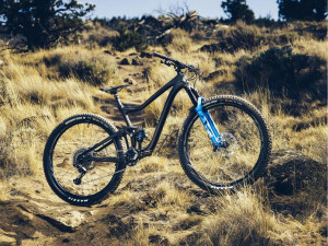 Giant didn't make a long travel Trance 29er