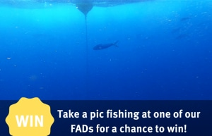 Queensland FAD competition
