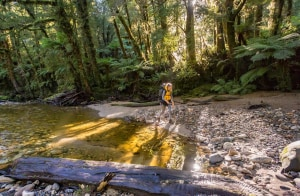 NZ's next Great Walk opens in December
