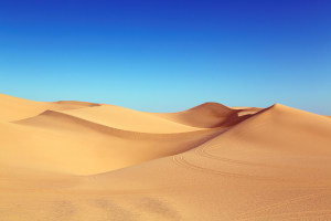The British police's AI keeps confusing deserts with nude images (really)