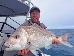 Snapper in WA get the help they need