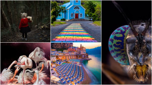 Who won our October 'Colour' photo comp?