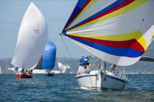 Island Racing divisions swell as entries roll in for Bay of Islands Sailing Week
