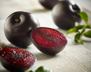 Speciality plums enter stores from Australia Day