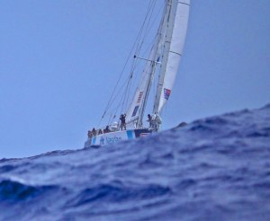Clipper yachts fly past Jamaica in race to New York