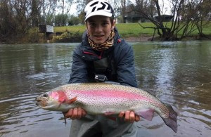 Tonnes of trout to be stocked near Eildon for opening