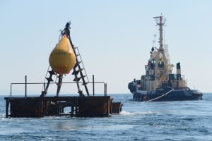 Newcastle's artificial reef open for business