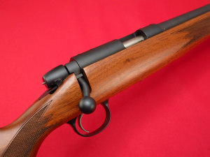 Remington Model 504 One of The Best