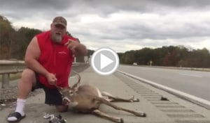 It Doesn't Get More Redneck than this Highway Deer Accident