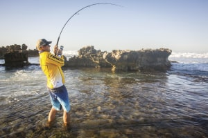 How to buy the right rod