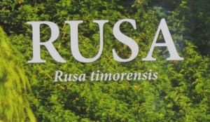Book Review for RUSA: Rusa Timorensis