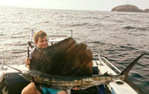 Coffs sailfish surprise