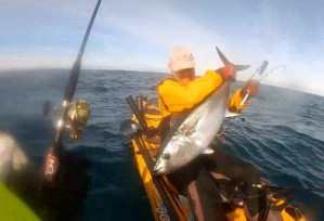 VIDEO: Yak southern bluefin!