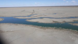 Apparent mass fish kill in Menindee Lakes system