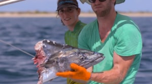"VIDEO: Fishing the Wild presents ""Cape Carnage"""