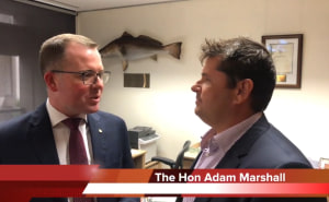 VIDEO: NSW Minister for Agriculture says no more marine parks