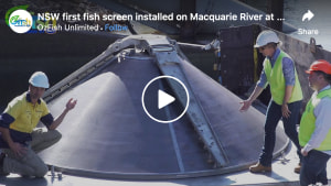 VIDEO: NSW's first fish screen installed on Macquarie River