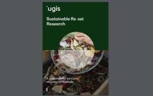 Report, scale of food waste still not understood