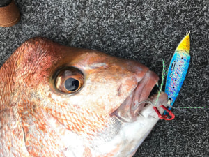 Berkley Skid Jig review