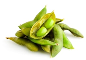 Phytoestrogens and soy products