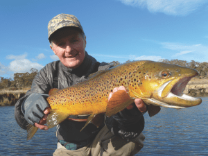 Target Snowy Mountains spawn run trout using spin gear