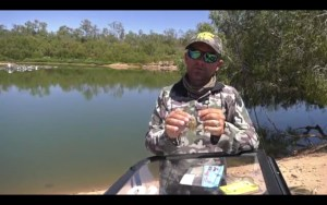 VIDEO: Jig spinner and spinnerbait tips