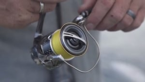 VIDEO: Shimano's Stella FJ