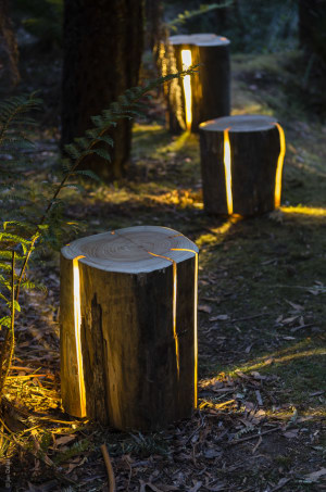 Tasmanian Designer Wins International Lighting Award