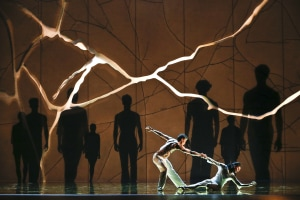 THE AUSTRALIAN BALLET: VERVE