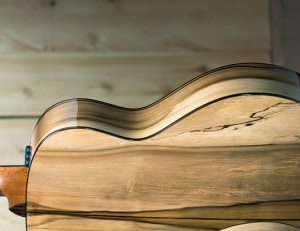Tonewoods: woods that suit musical instrument making