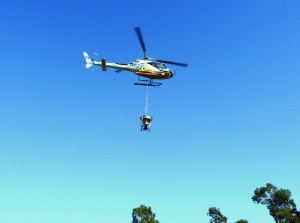 Aerial 1080 baiting programs underway throughout NSW