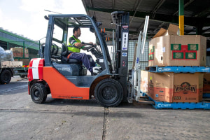 Toyota forklifts doing green work at Sydney Markets