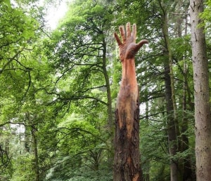 Artist transforms damaged tree into giant hand