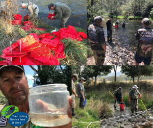 In-stream trout egg incubators trialled in Vic