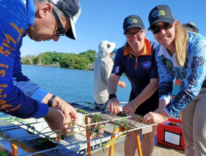 Seagrass restoration kick started at Mourilyan Harbour Innisfail