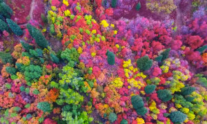 Spectacular drone footage of autumn in Utah