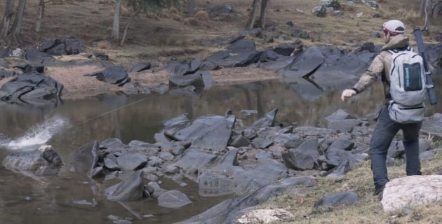 VIDEO: Fly fishing for Murray cod - Fishing World